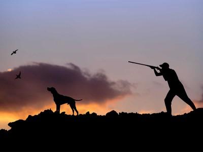 Екіпірування для мисливця-початківця
